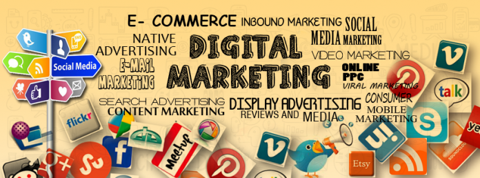 6 months industrial training in digital marketing