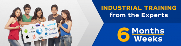 six months industrial training in ludhiana